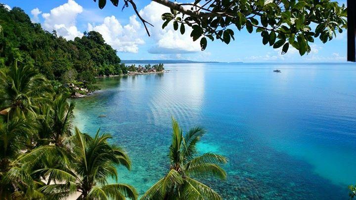Maluku4